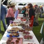 Cake Stall at St Ewe Village Fete